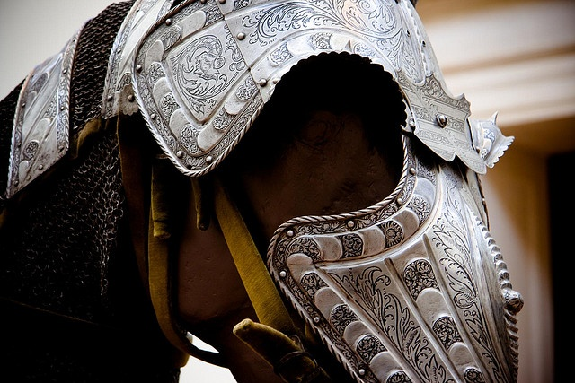 Horse Armor by elrina753, via Flickr