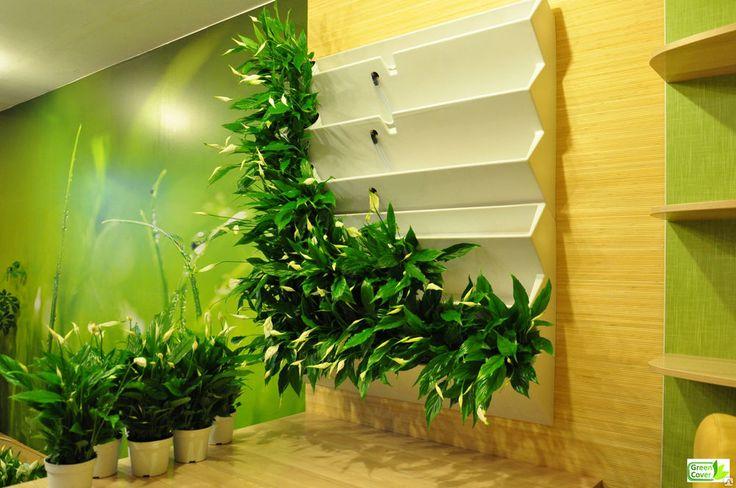 Зеленая стена в интерьере своими руками 33