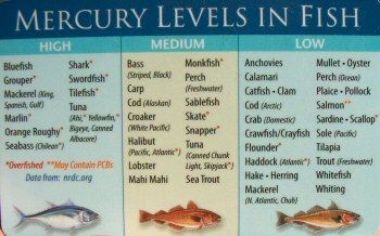 mercury levels in fish chart health foods pinterest