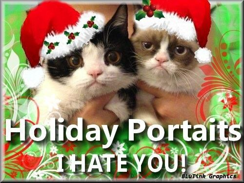 gallery for gt grumpy cat and pokey christmas