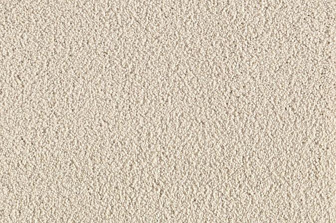 Carpet one santa cruz