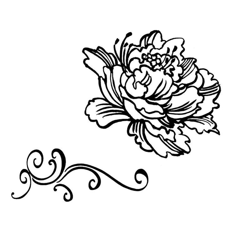 Peony Flower Line Drawing : Peony drawing tattoos