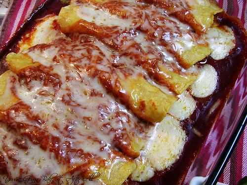 Chicken Enchiladas with Red Chile Sauce | The Whole Enchilada | Pinte ...