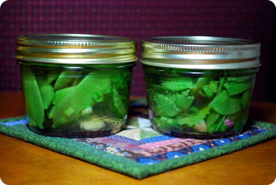 ... Pickled Sugarsnap Peas are quick to make and add a fun element to