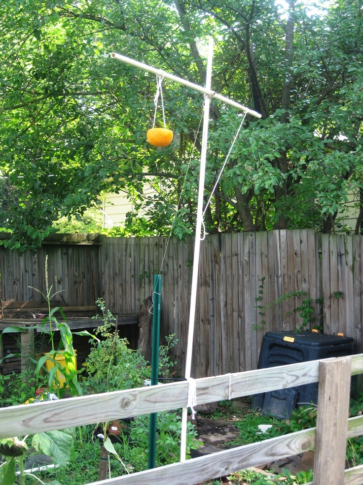 pvc pipe diy bird feeder pole my green thumb pinterest