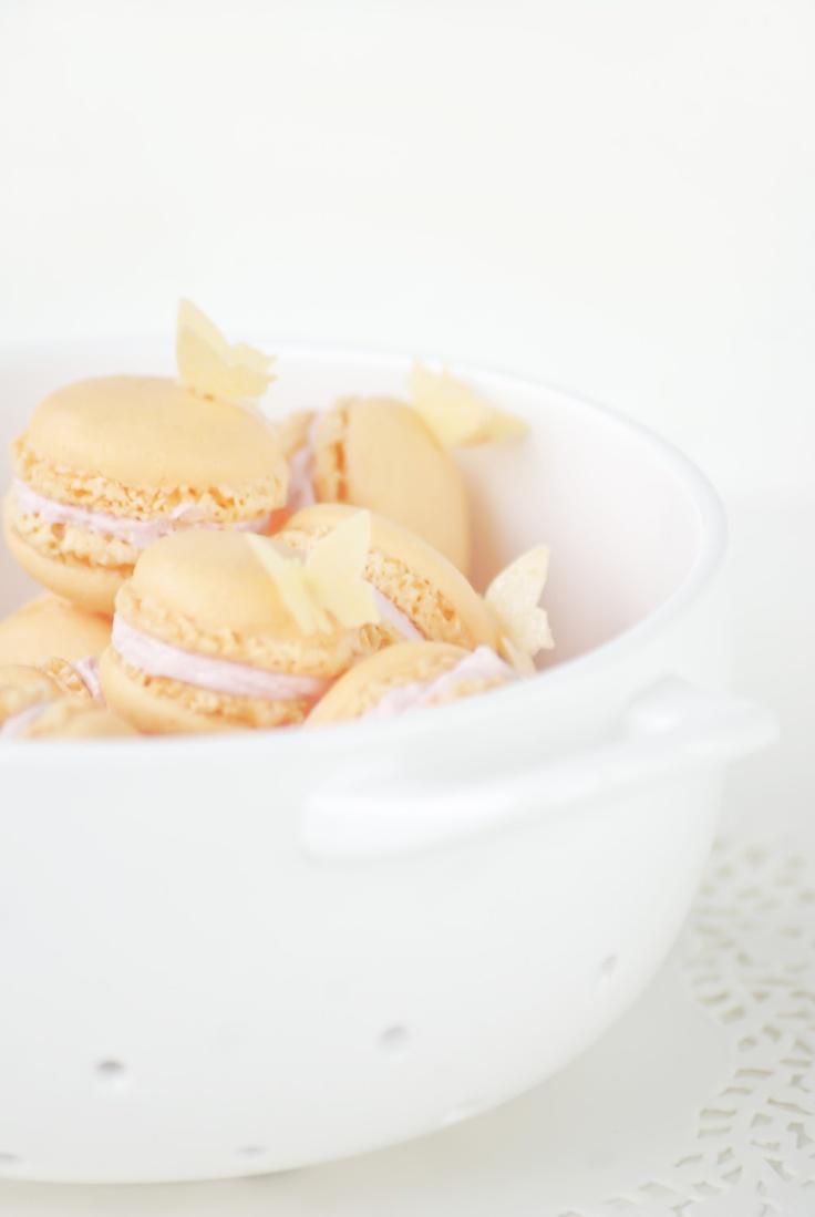 macarons & papillon comestibles macaron & edible butterfly
