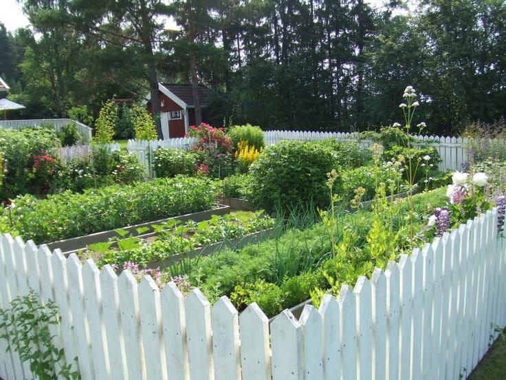 Perfect vegetable garden beautiful growing vegetables for The perfect vegetable garden