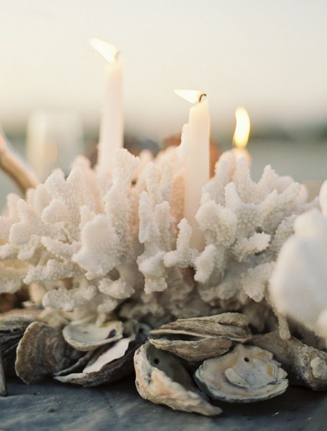 coral + candles + clam shells