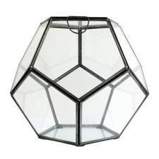 terrarium via honey kennedy $55