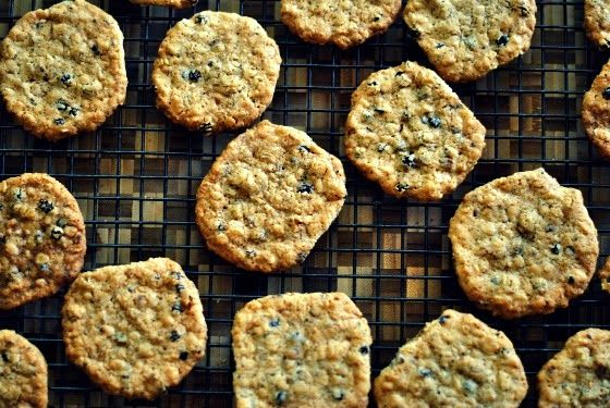 Crispy Toasted Oatmeal and Black Currant Cookies