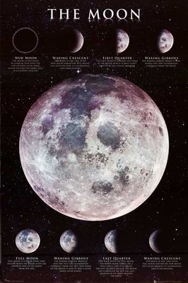 Moon phases poster   ↠ Home ↞   Pinterest