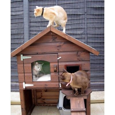 Outdoor Cat House http://www.forshamcottagearks.com/outdoor-cat-houses ...