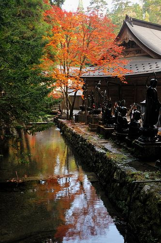Mt. Koya, Japan  BJS Archive - Scenery 2  Pinterest
