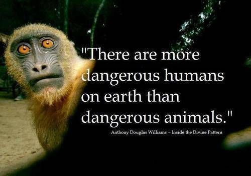 So true!!!! STOP ANIMAL CRUELTY, ABUSE  AND ANIMAL TESTING!!!!