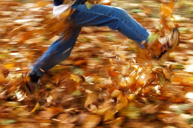 Autumn through the eyes of a Child