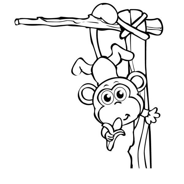 Monkey Baby Monkey Circus Coloring Page
