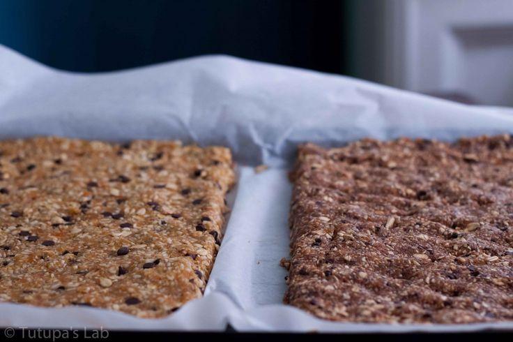 Homemade Chocolate Hazelnut Larabar | Juice Joint | Pinterest