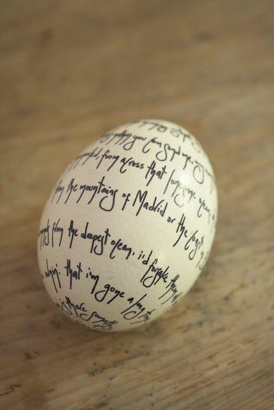 egg script