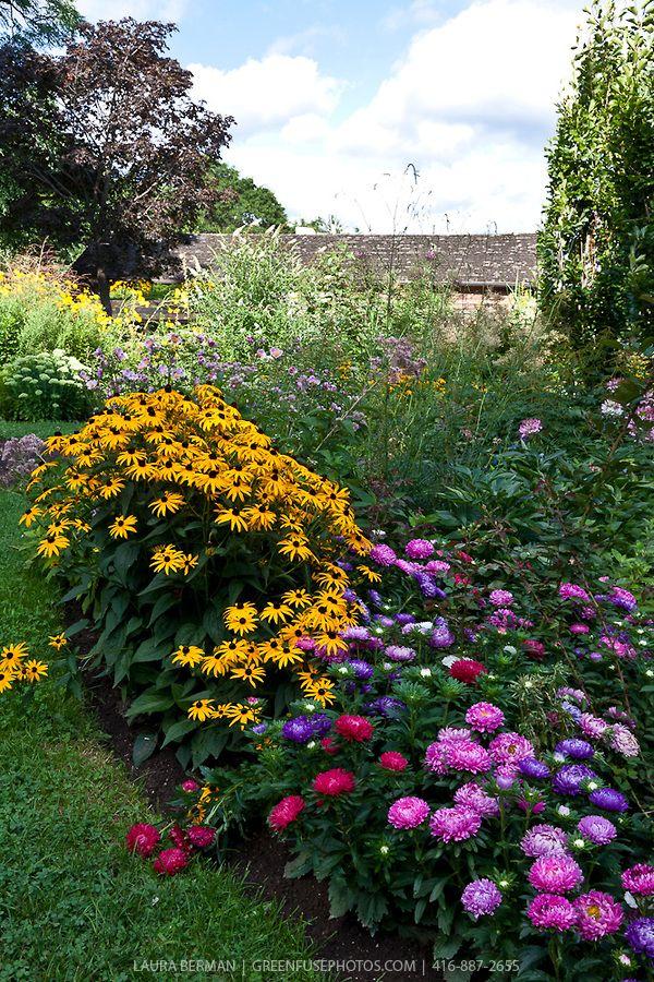 Perennial Flower Garden Garden Ideas Pinterest