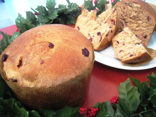 Cranberry Christmas bread or wannabe panettone...