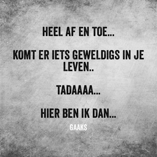 Citaten Over Humor : Grappige nederlandse quotes mx belbin
