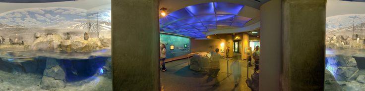 The Tennessee Aquarium is a non-profit public aquarium located in ...