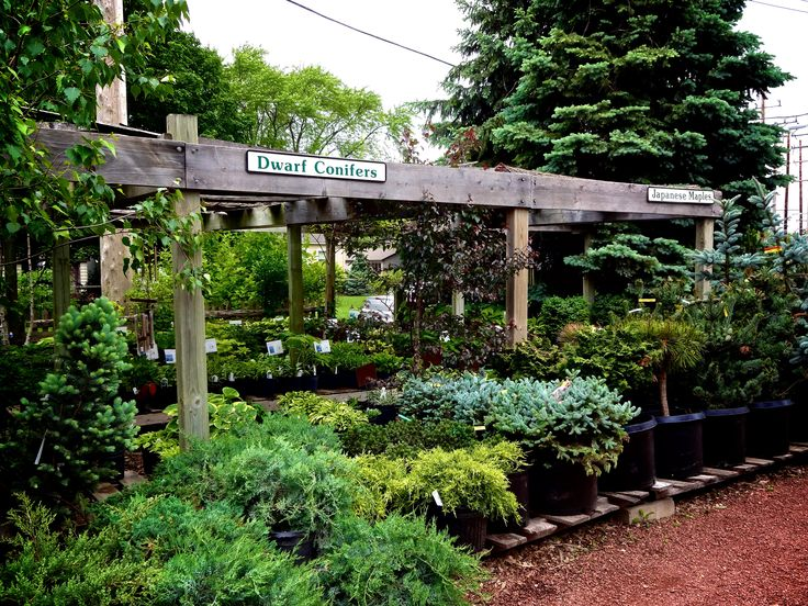 blumen gardens