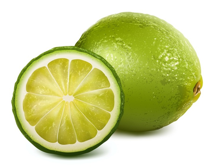Extraordinary illustration of a lime.