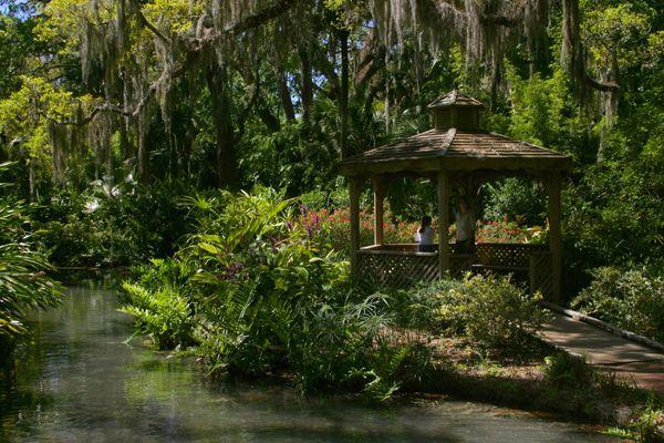 Washington Oaks Gardens State Park Places To Go Pinterest