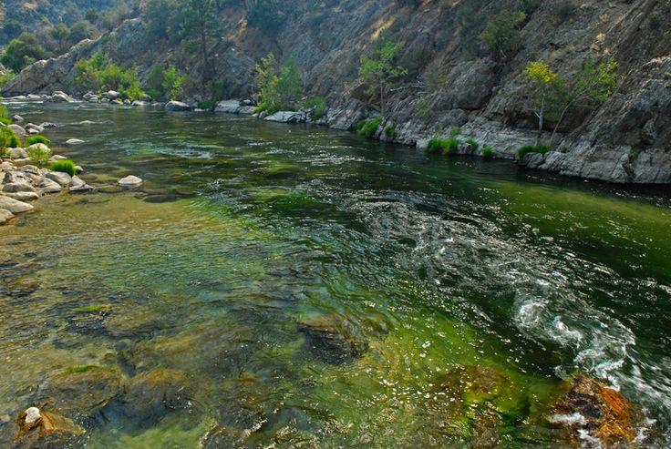Kern river kernriver ca pinterest for Sierra fish in english