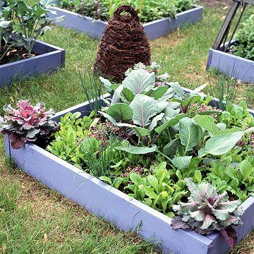 Small Space Vegetable Garden Plan