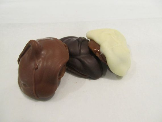 Chocolate Covered Turtles by SweetSensationsChoc on Etsy