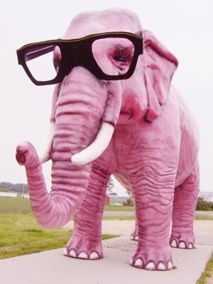 """All elephants are pink... Nelly is an elephant... Nelly is pink."" Say hello to hipster Nelly, everybody. :)"