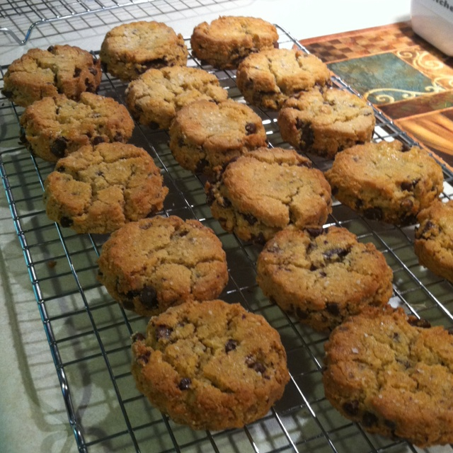 Gluten free dairy free thousand layer chocolate chip cookies with sea ...