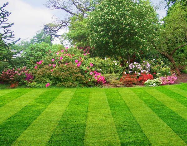 Image Result For A T Home And Garden Carea