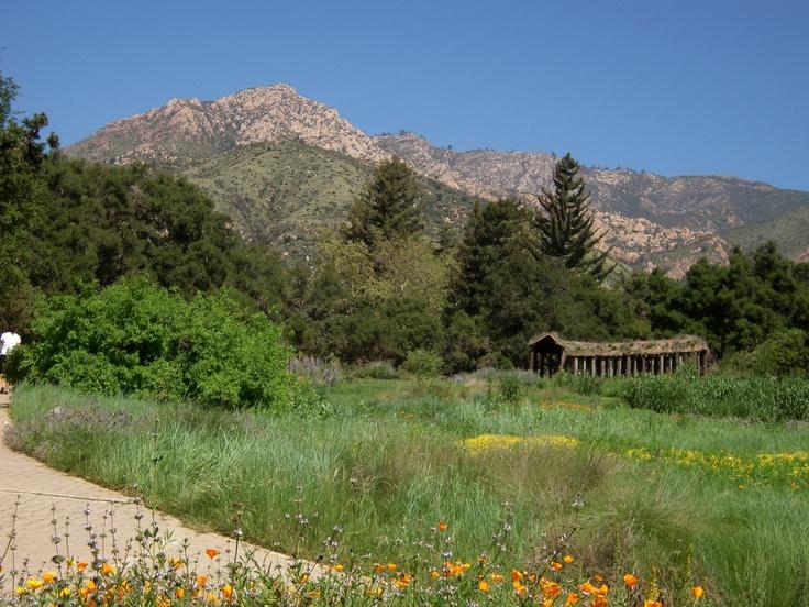 the santa barbara botanic garden gardens i love pinterest