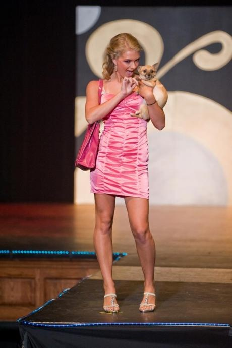 legally blonde dress up