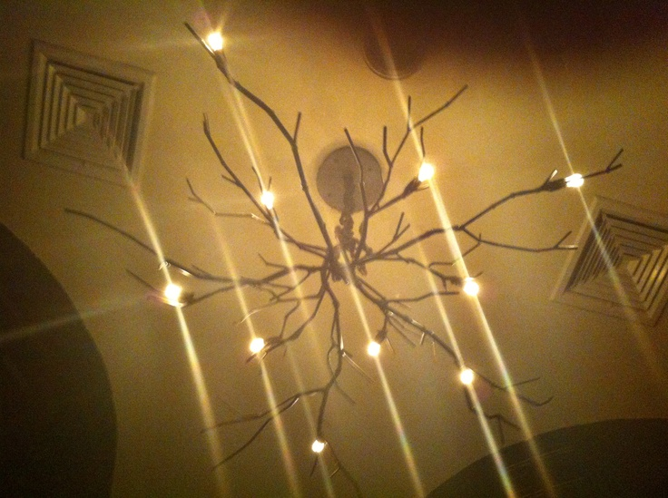 Pin by kelly wishard on modern poetry pinterest - Tree branch light fixture ...