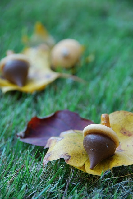 Chocolate kiss acorn treats. Super easy and cute!