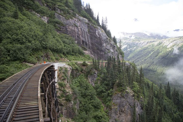 See mountains, glaciers and wildlife from the Alaska rail. #train #cruise
