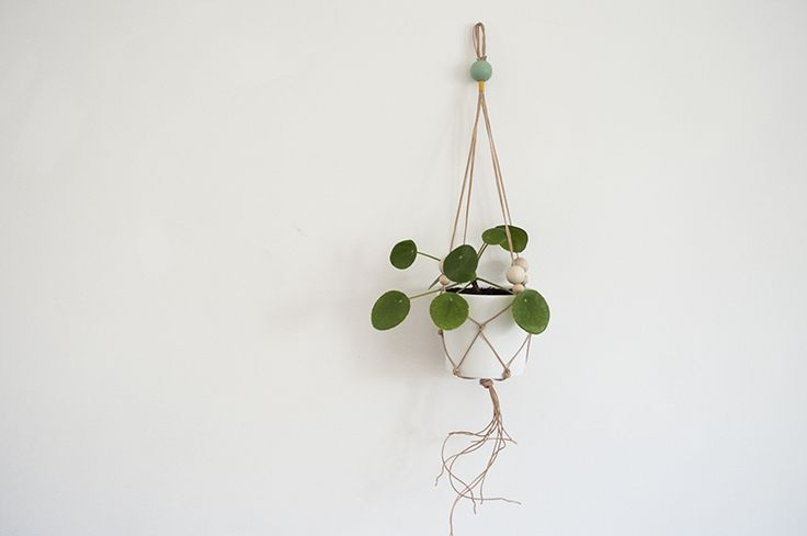 knots - plant hanger 1 : leather . eco wood beads . cotton / white ...