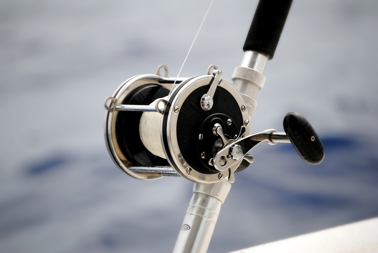 Deep sea fishing reel fishing equipment pinterest for Deep sea fishing rod and reel