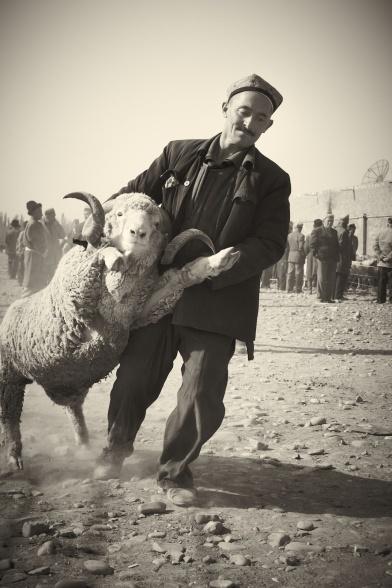 the lamb essay