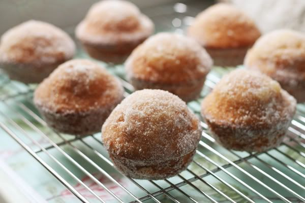 Doughnut muffins- have made these- soooooooo good