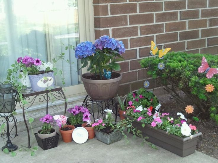 Small apartment patio flower garden gardening pinterest for Best flowers for apartment balcony