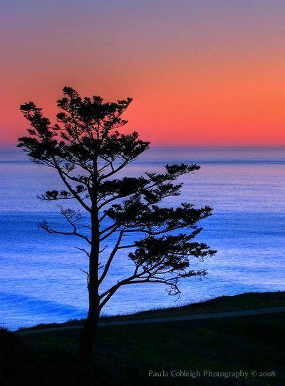 Silhouette Sunset by *La-Vita-a-Bella