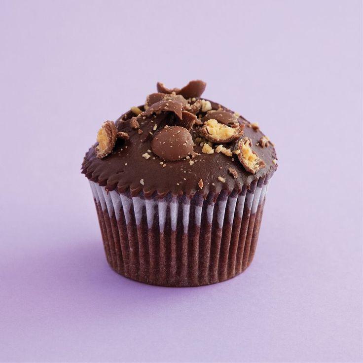 Chocolate Malt Cupcakes - Malted chocolate sponge generously topped ...