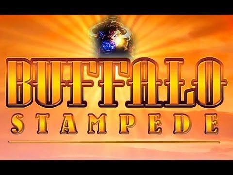 buffalo stampede free play