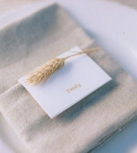 Good Life of Design... Ideas For Hoiday Napkins and Silverware!