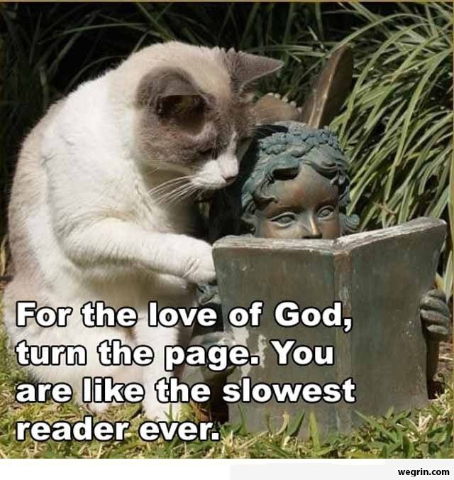 Turn the page, dang it!!!